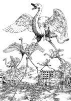 【絵:ペン画】Space Swan