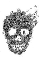 【絵:ペン画】Skull in my head